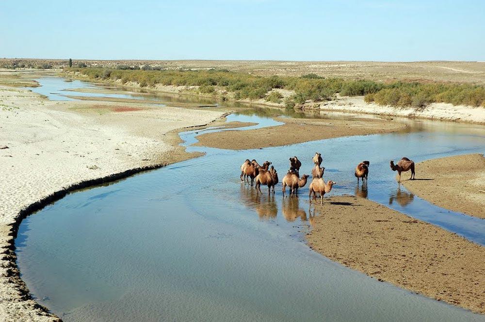 Река Эмба