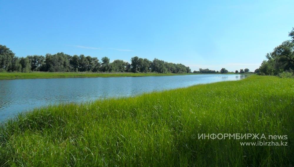 Чапурино озеро в июне 2019 года