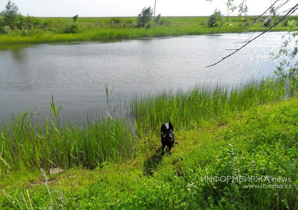 Озеро Кресты 4 июня 2019 года