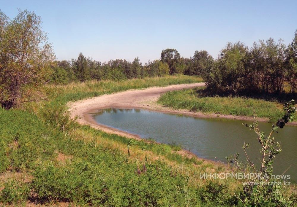 Высыхает ещё одна часть озера Кресты. 19 июля 2020 г.